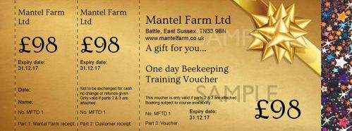 £98 Beekeeping One Day Training Voucher