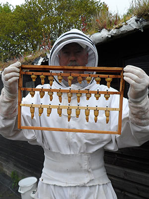 Mike Cullen - Beekeeping Courses Tutor