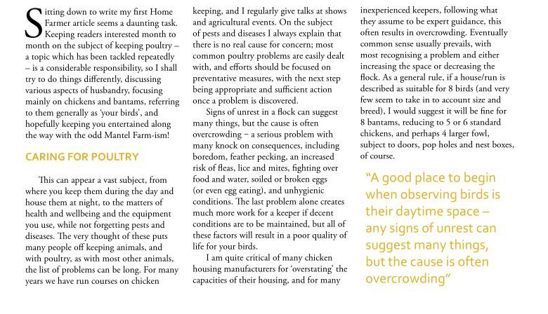 poultry keeping - home farmer article - chicken mot page 2