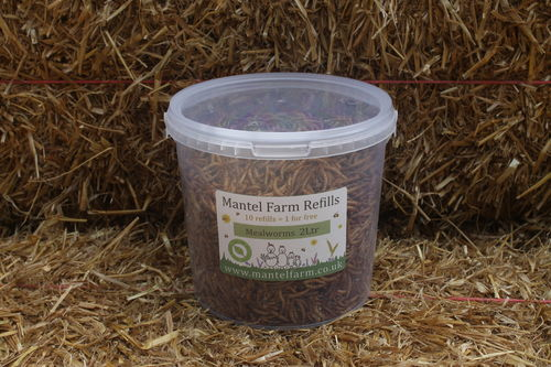 Mealworms 2Ltr
