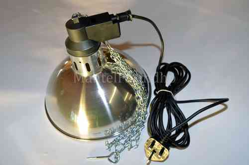 Traditional Brooder Lamp