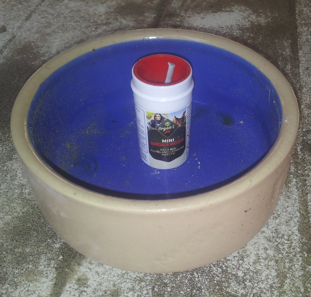 Insect Smoke Bomb Poultry For Sale Beekeeping Courses