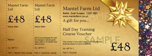 £48 Training Voucher