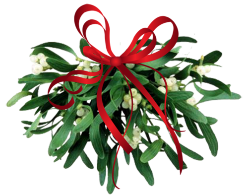 A Christmas Mistletoe Poem