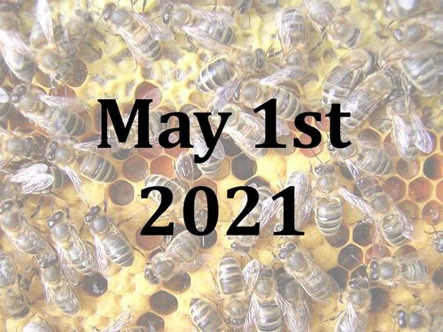 A Beekeeping Taster Day with Jill and Josh - Sat 1st May 2021