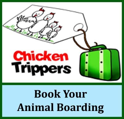 Book_Your_Animal_Boarding_JPEG