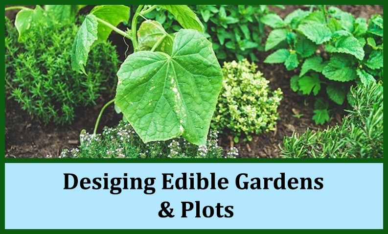 Desiging_Edible_Gardens_and_plots
