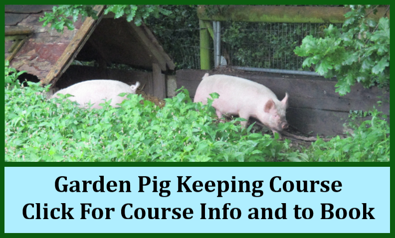 Pig Keeping Course