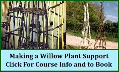 cat_Willow_Plant_Support