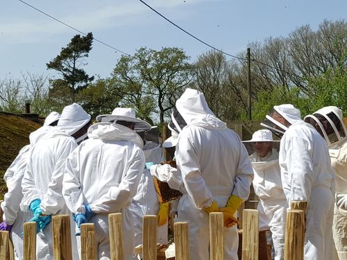 beekeeping weekend courses